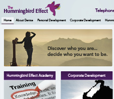 The Hummingbird Effect Website Design
